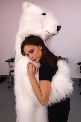 Викторию Бекхэм застукали в объятьях белого медведя