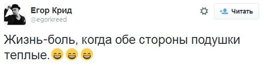 ТОП-5 ЗВЕЗДНЫХ ТВИТТОВ