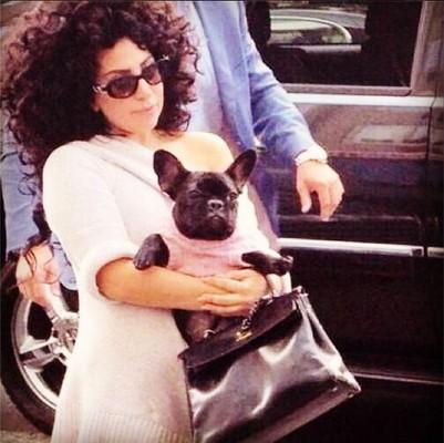 ТОП-5 звездных Instagram за неделю! Леди Гага