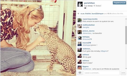ТОП-5 звездных Instagram за неделю!