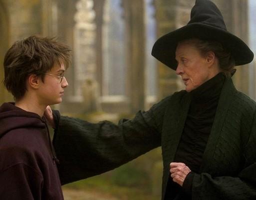 Гарри Поттер и профессор Макгонагалл