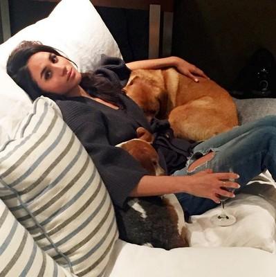 Меган Маркл со своими собаками