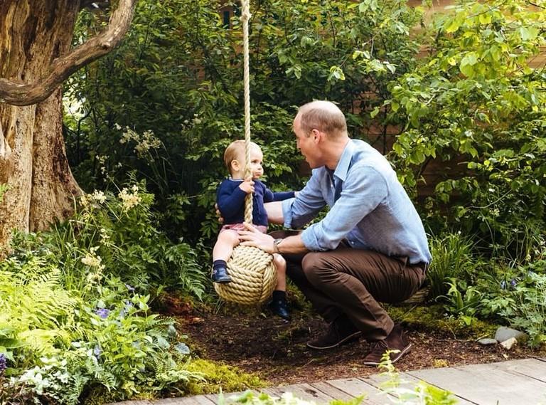 Принц Уильям с принцем Луи