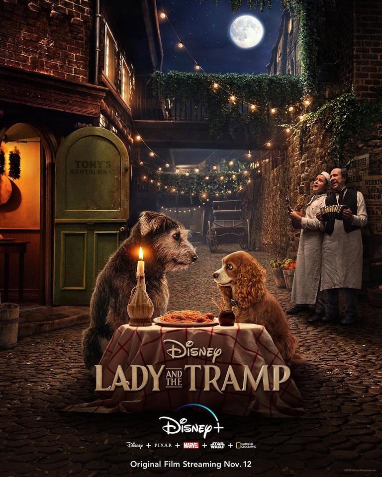 Постер фильма «Леди и Бродяга»