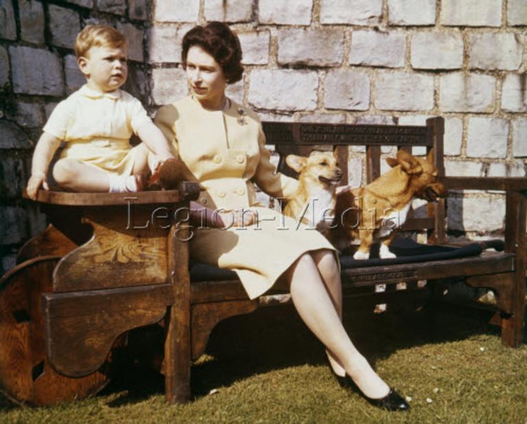 Королева Елизавета II с принцем Эндрю и корги, 1962