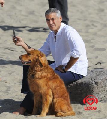 Джордж Клуни снимается в рекламе нового смартфона «Android»